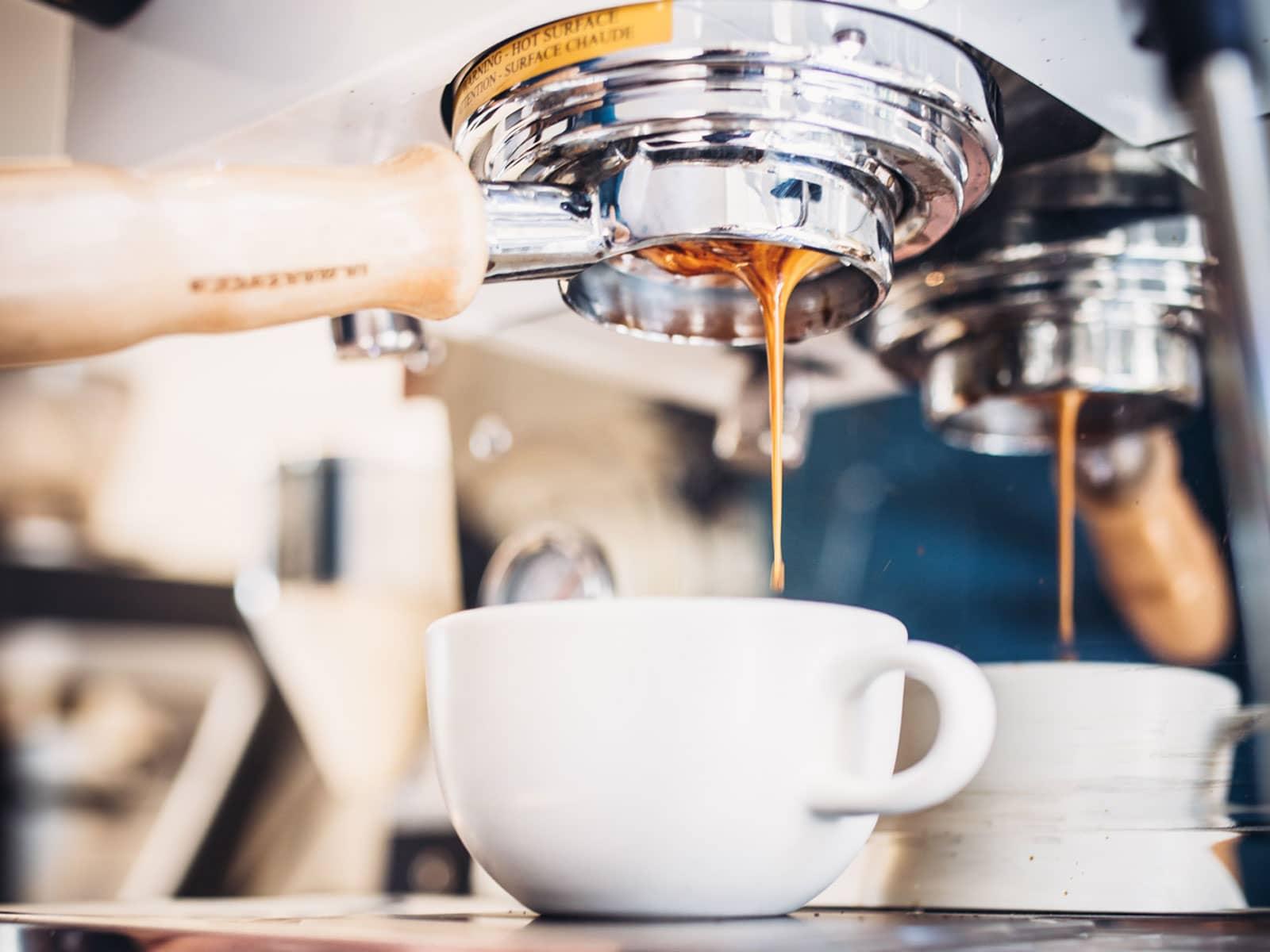 Understanding Espresso with La Marzocco | Guest Roaster ...